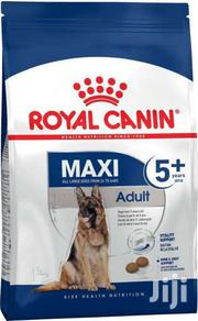 Royal Canin Maxi 5+ Dog Food – 10kg | Pet's Accessories for sale in Nairobi, Kahawa