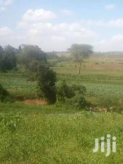 30 And 8 Acres Of Land For Sale In Nyeri Ksh 400k PA. | Land & Plots For Sale for sale in Nyeri, Rugi