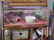 Reptile Cages | Pet's Accessories for sale in Nairobi, Nairobi Central