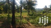 Quarter Acre Piece of Land for Sale at Vipingo ID 2477 | Land & Plots For Sale for sale in Kilifi, Shimo La Tewa