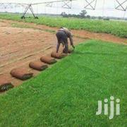 Reliable Lawn & Garden Services In Nairobi.Professional And Affordable | Landscaping & Gardening Services for sale in Nairobi, Kilimani