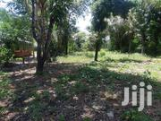 Kilifi Pondapi Paradise Plot of 50 by 110 on Sale | Land & Plots For Sale for sale in Kilifi, Sokoni