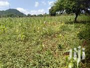 Prime 50 X 100 Sqft Plots At 1.7M On Sale At Kwa Vonza Kitui County | Land & Plots For Sale for sale in Kitui, Kwavonza/Yatta