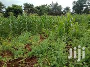 Prime Residential And Agricultural Land | Land & Plots For Sale for sale in Nyandarua, Engineer