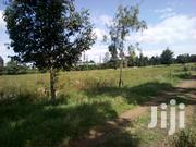 One Acre Prime Land for Sale in Njoro Town   Land & Plots For Sale for sale in Nakuru, Njoro