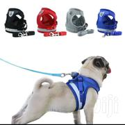 Dog Leash, Leashes, Dog Collar, Dog Bracelet | Pet's Accessories for sale in Siaya, East Asembo