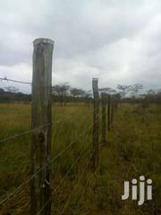 Maguguni 50by100 For Sale | Land & Plots For Sale for sale in Murang'a, Gaturi