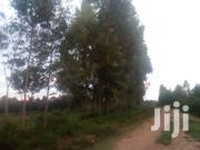 Prime Land For Sale | Land & Plots For Sale for sale in Homa Bay, Homa Bay East
