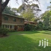 To Let 4bdrm With Dsq Standalone At Lavngton Nairobi Kenya | Commercial Property For Rent for sale in Nairobi, Lavington