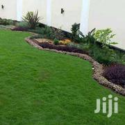 Lawn,Patio,Garden- Landscaping | Landscaping & Gardening Services for sale in Nairobi, Kawangware