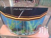 Beautiful Aquariums | Fish for sale in Nairobi, Nairobi Central