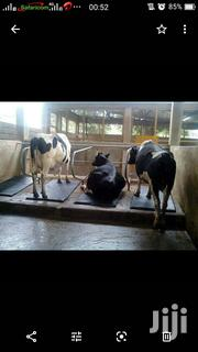Rubber Mats And Cow Mattresses | Farm Machinery & Equipment for sale in Nairobi, Nairobi Central