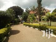 Runda- A UN Approved, 5 Bedrooms House   Houses & Apartments For Rent for sale in Nairobi, Kitisuru