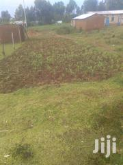 Half Acre Piece of Land Availabble | Land & Plots For Sale for sale in Bungoma, Bukembe East
