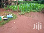 1/8 Acre on Sale | Land & Plots For Sale for sale in Nyeri, Kamakwa/Mukaro