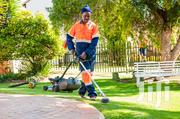 Lawn Mowing,Hedge Trimming,Rubbish Removal,Pruning Or Gardening | Landscaping & Gardening Services for sale in Nairobi, Nairobi Central