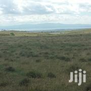 5.5 Acres Land For Sale | Land & Plots For Sale for sale in Nakuru, Naivasha East