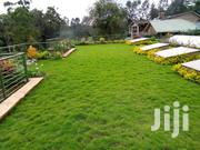 3 Bedroom Executive Spacious House   Houses & Apartments For Rent for sale in Nairobi, Karen