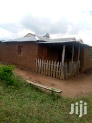 Land And House For Sale At Chemnoet In 3 Point Of Land | Land & Plots For Sale for sale in Nandi, Kabiyet