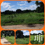 👉Kilifi Mtwapa Animo 👉A Prime Land 6acreas on Sale 👉It's a Flat Are | Land & Plots For Sale for sale in Kilifi, Mtwapa
