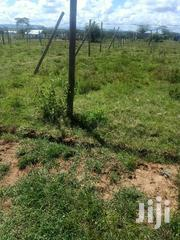 A 1/2 Acre for Sale in Isinya   Land & Plots For Sale for sale in Kajiado, Kitengela