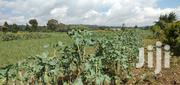11 Acres Land for Sale Next to Nyamathi Secondary School | Land & Plots For Sale for sale in Nakuru, Naivasha East