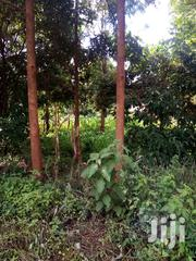 1acre in Mutunduri | Land & Plots For Sale for sale in Embu, Mbeti North