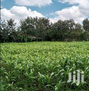 1/8 Plot Umoja Road, Ongata Rongai For Rent/Lease | Land & Plots for Rent for sale in Kajiado, Ongata Rongai