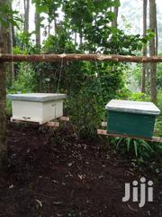 Beehives For Profit Making. | Farm Machinery & Equipment for sale in Mombasa, Tudor